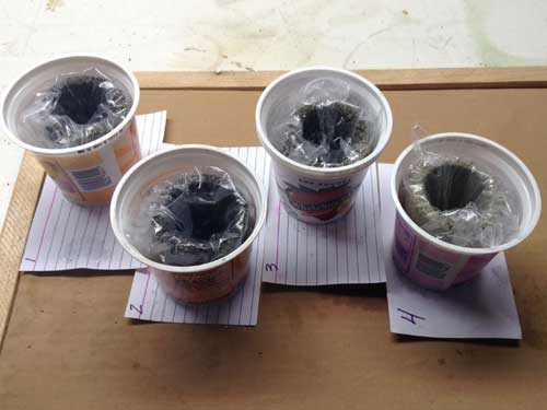 Wrapped Concrete Cups